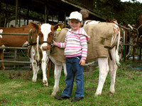 Small dairy farmer