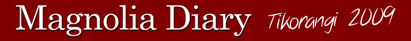 Click on the Magnolia diary logo above to see all diary entires